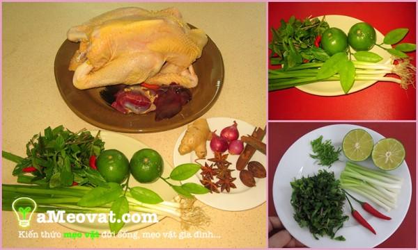 Các nguyên liệu để nấu món phở gà thơm ngon đúng vị trong một nốt nhạc.